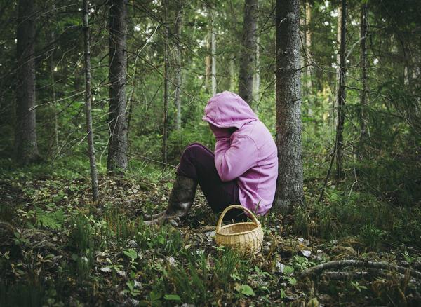 МЧС напоминает: как в лес собраться, чтобы не потеряться.